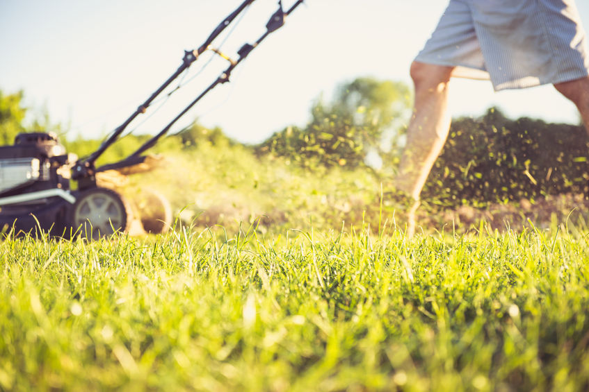 41718861 – photo of a young man mowing the grass during the beautiful evening.